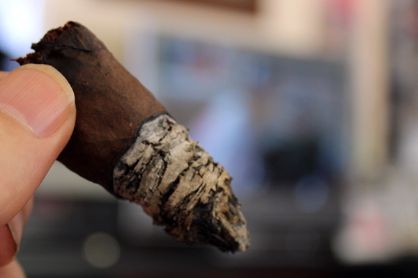 Dominion Cigar Black Lotus
