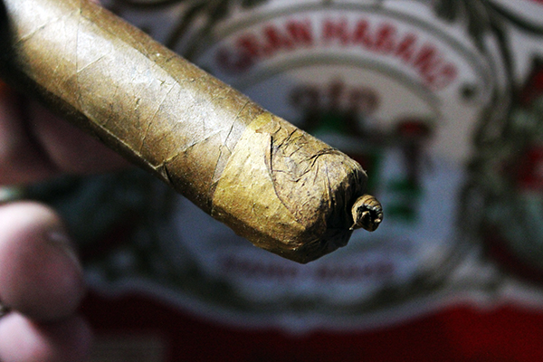 Gran Habano Persian King