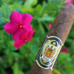 Potter Cigars Salomon Black